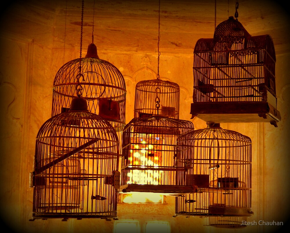 I prefer empty cage, I prefer freedom. by Jitesh Chauhan