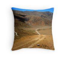 Desert Terrain Roadway Throw Pillow