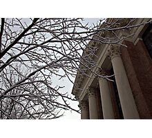 Harvard Yard Photographic Print