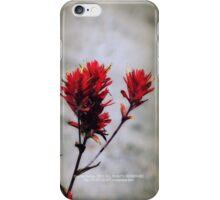 paintbrush wildflowers, Johnston's Ridge 2 iPhone Case/Skin