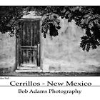 &quot;Door In Adobe Wall - Cerrillos - New Mexico&quot; by Bob Adams