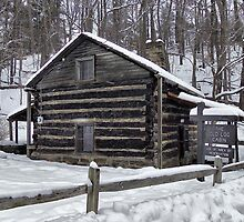 Old Log Cabin by Monnie Ryan
