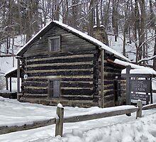 Old Log Cabin by Monnie Ryan