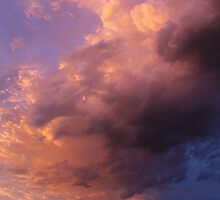 Pink Storm by Kathi Huff