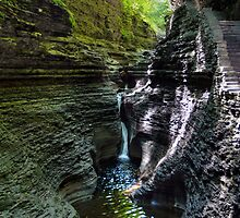 Hypnotic Magic of Watkins Glen by Gene Walls