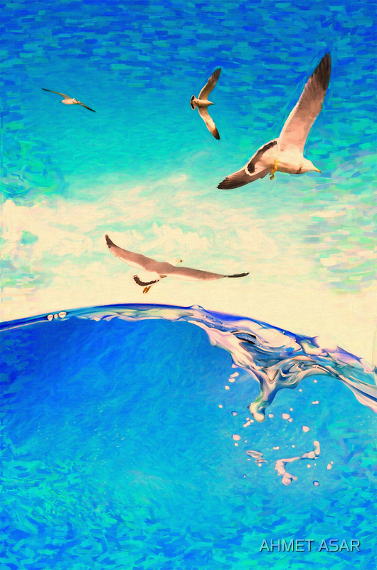 landscape waves and seagulls by Adam Asar