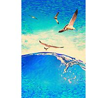 landscape waves and seagulls Photographic Print