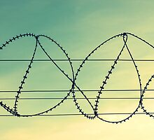More wires? by mkokonoglou