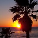 encinitas sunset by Bruce  Dickson