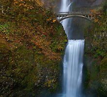 Multnomah Falls, Oregon. by Todd Rollins