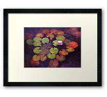 Lilly Pads Framed Print
