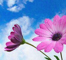 pink flower by Adam Asar