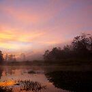Sunrise, Munnar, Kerala by EveW