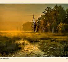 Golden mist, Dambrasca Maine by Dave  Higgins