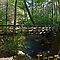 Falls Trail Footbridge In Ricketts Glen by Gene Walls