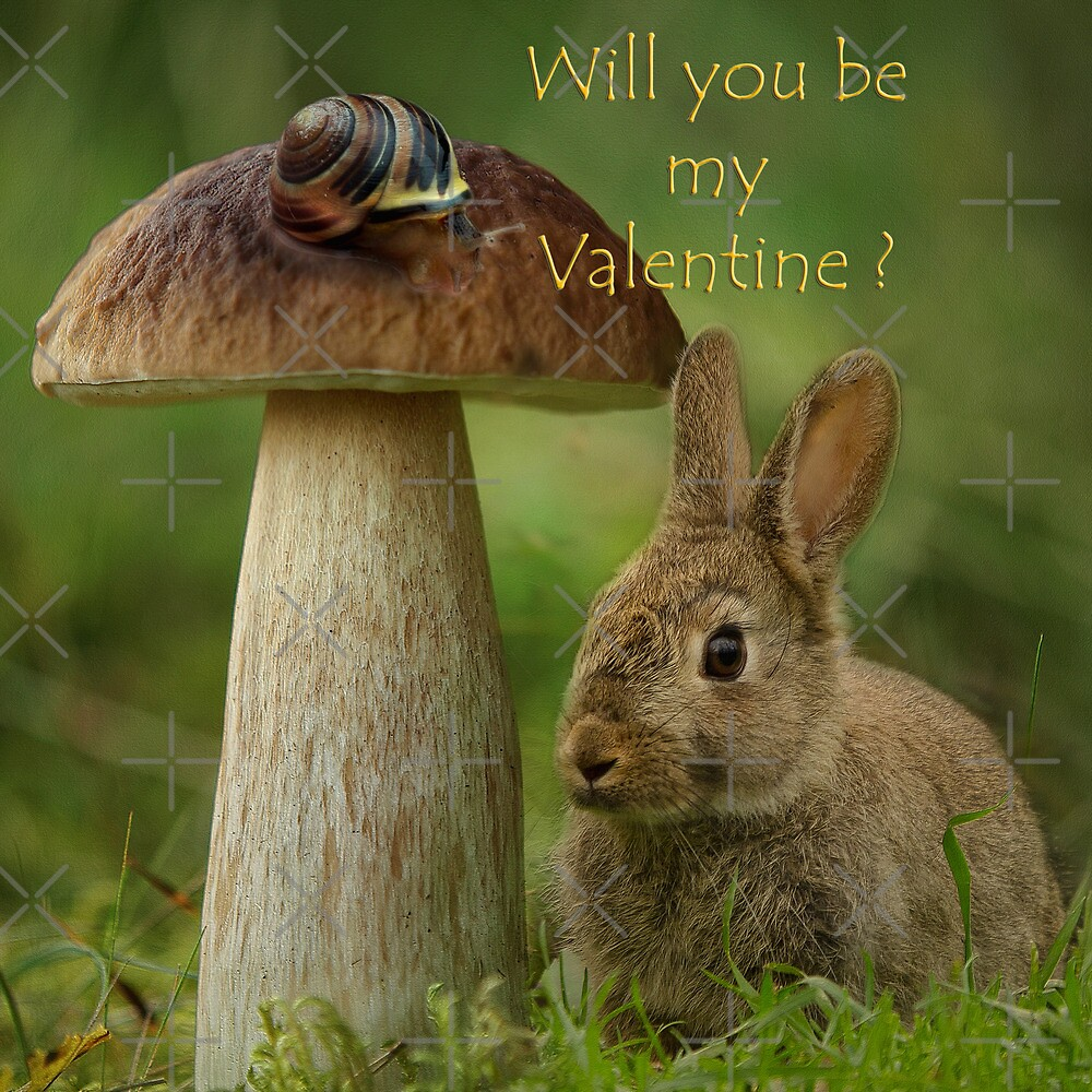 Will you be my Valentine by EbyArts