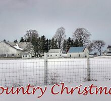 Country Christmas  by Gene Walls