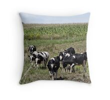 Cows comin home Throw Pillow