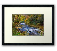 Laurel Creek in the Smokies Framed Print