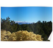 Humboldt Toiyabe National Forest, Nevada Poster