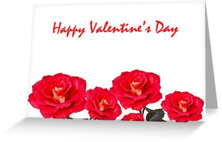 Roses for Valentine's Day by Mariola Szeliga