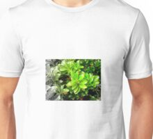 A Vibrant Transition Unisex T-Shirt