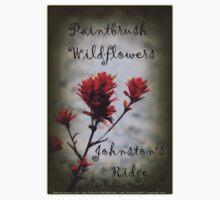 paintbrush wildflowers, Johnston's Ridge 2 Kids Tee