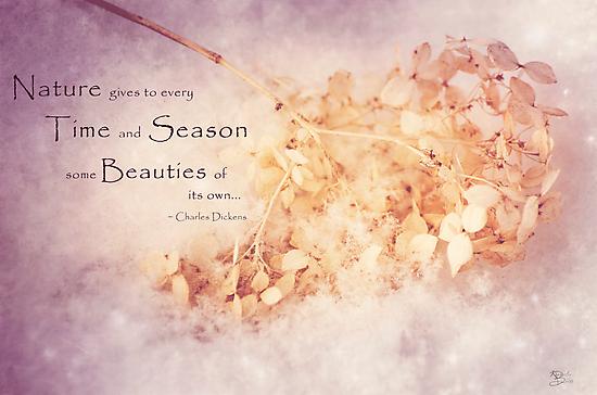 Season's Beauty by KBritt
