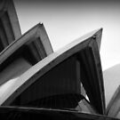 View of the Sydney Opera House #5 by Helen Eaton