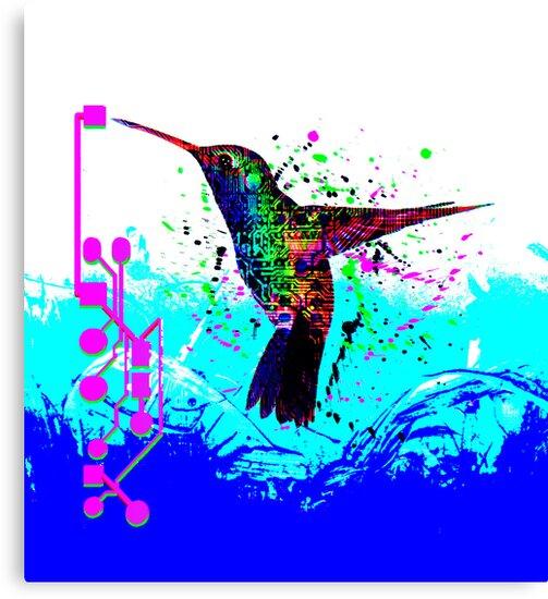 hummingbird Program by sebmcnulty