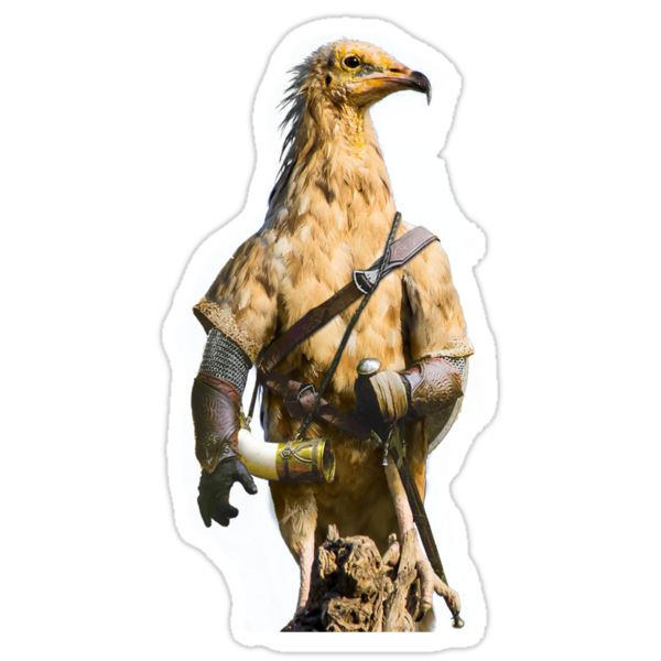 Egyptian Vulture Boromir by Felfriast
