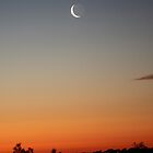 A slither of moon, over the sunset. by Alex Colcheedas