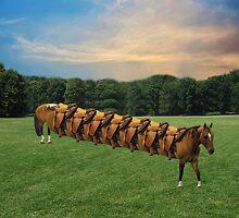 (✿◠‿◠)  HORSE LIMO RIDES SEVEN LETS RIDE LOL (✿◠‿◠) by ╰⊰✿ℒᵒᶹᵉ Bonita✿⊱╮ Lalonde✿⊱╮
