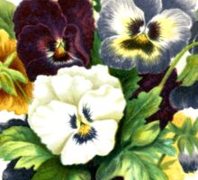 Pansies, Flowers, Leaves - Blue Yellow White Sticker
