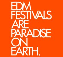 EDM Festivals Are Paradise On Earth by DropBass