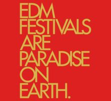 EDM Festivals Are Paradise On Earth (Mustard) by DropBass