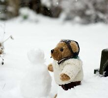 Building a  snowman. by sandyprints