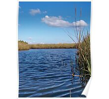 Sawgrass Water Sky and clouds Poster