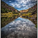 """Rio Grande Gorge"" by Bob Adams"