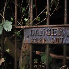 Danger by Richard Owen