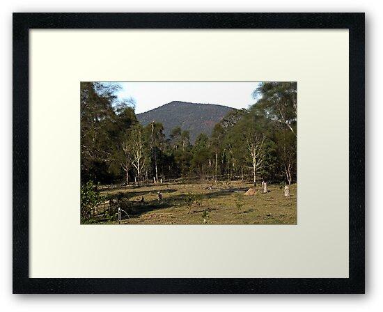 Mt Ewards by Mark Batten-O'Donohoe