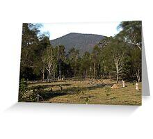 Mt Ewards Greeting Card