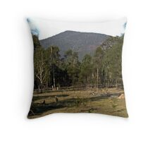 Mt Ewards Throw Pillow