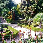 Tropical Garden in Southern France by magicaltrails