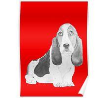 Bassett Hound Puppy in Red Poster