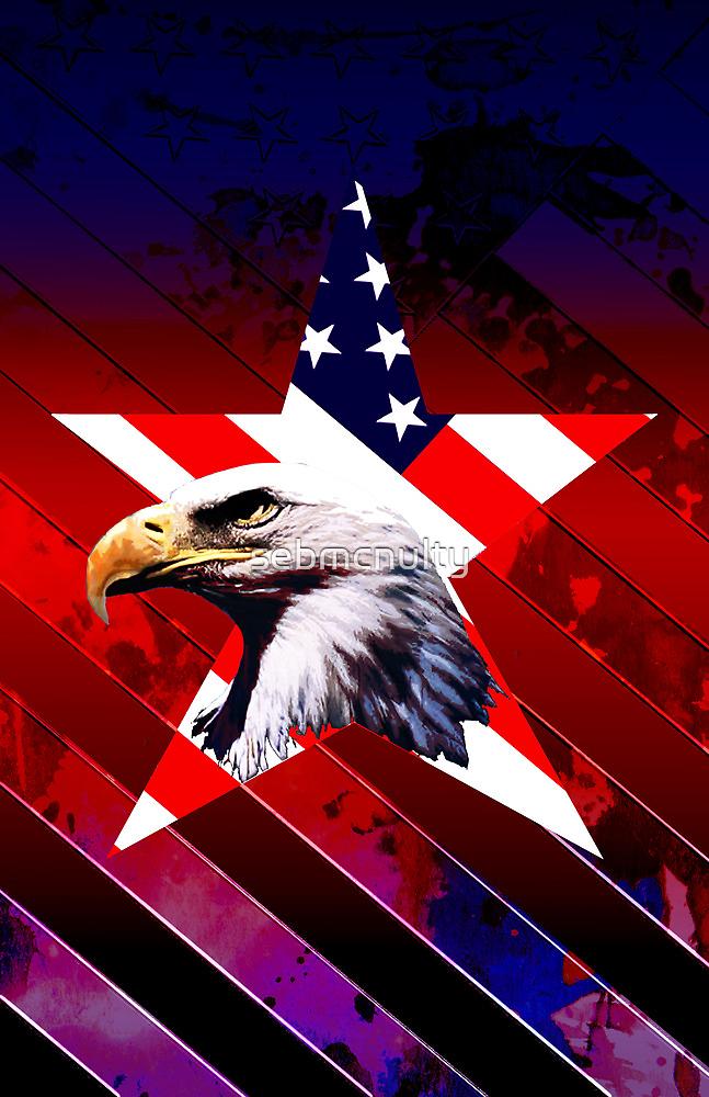 american star the Bald eagle by sebmcnulty