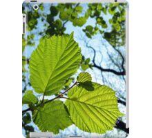 Woodland Leaves iPad Case/Skin