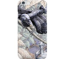 The Crow and the Pitcher iPhone Case/Skin