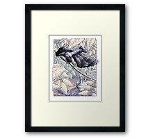 The Crow and the Pitcher Framed Print