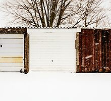 Not All Snowy Landscape Scenes Are The Same by Ed Sweetman